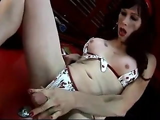masturbation (shemale), lingerie (shemale), sex toy (shemale)
